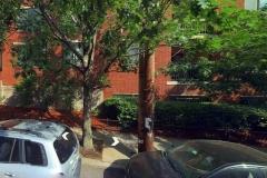85 Brainerd Rd Unit 311 Alston MA 02134 - Boston Condo Lien Foreclosure - Streetside View